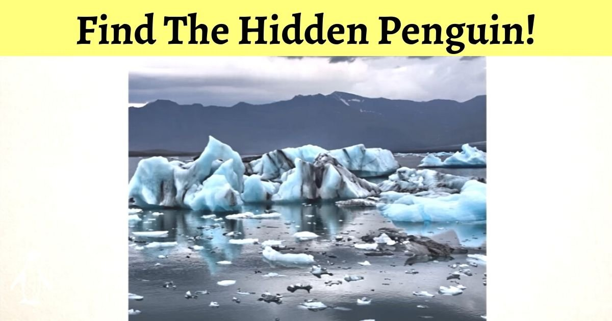credit mind oddities.jpg?resize=1200,630 - Can You Find A Penguin In The Photo? 99% Of Viewers Failed To Spot The Bird!