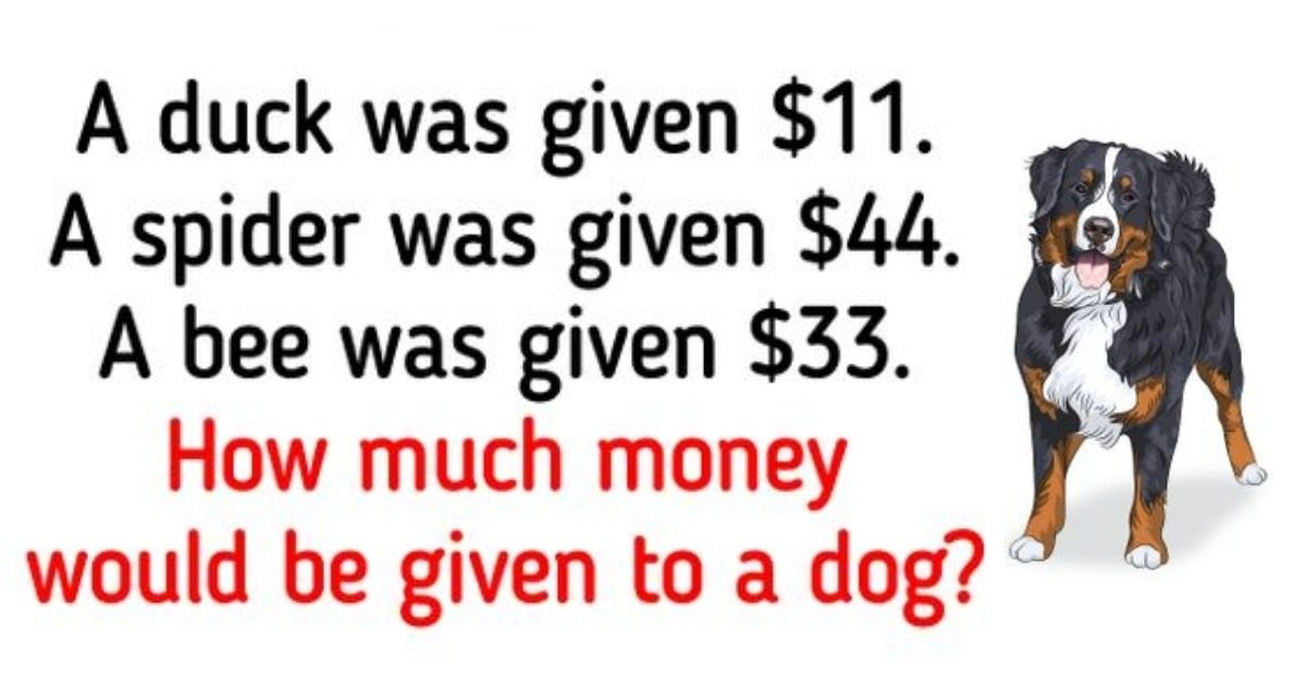 dog4.jpg?resize=1200,630 - Brain Test: 90% Of People FAIL To Solve This Test! But Can You Figure Out How Much Money Would Be Given To A Dog?