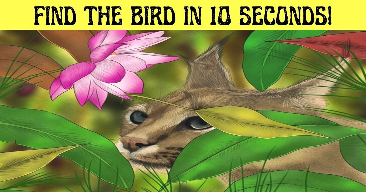 find the bird in 10 seconds.jpg?resize=1200,630 - How Fast Can You Spot The Hidden Bird In This Picture Of A Wild Cat?
