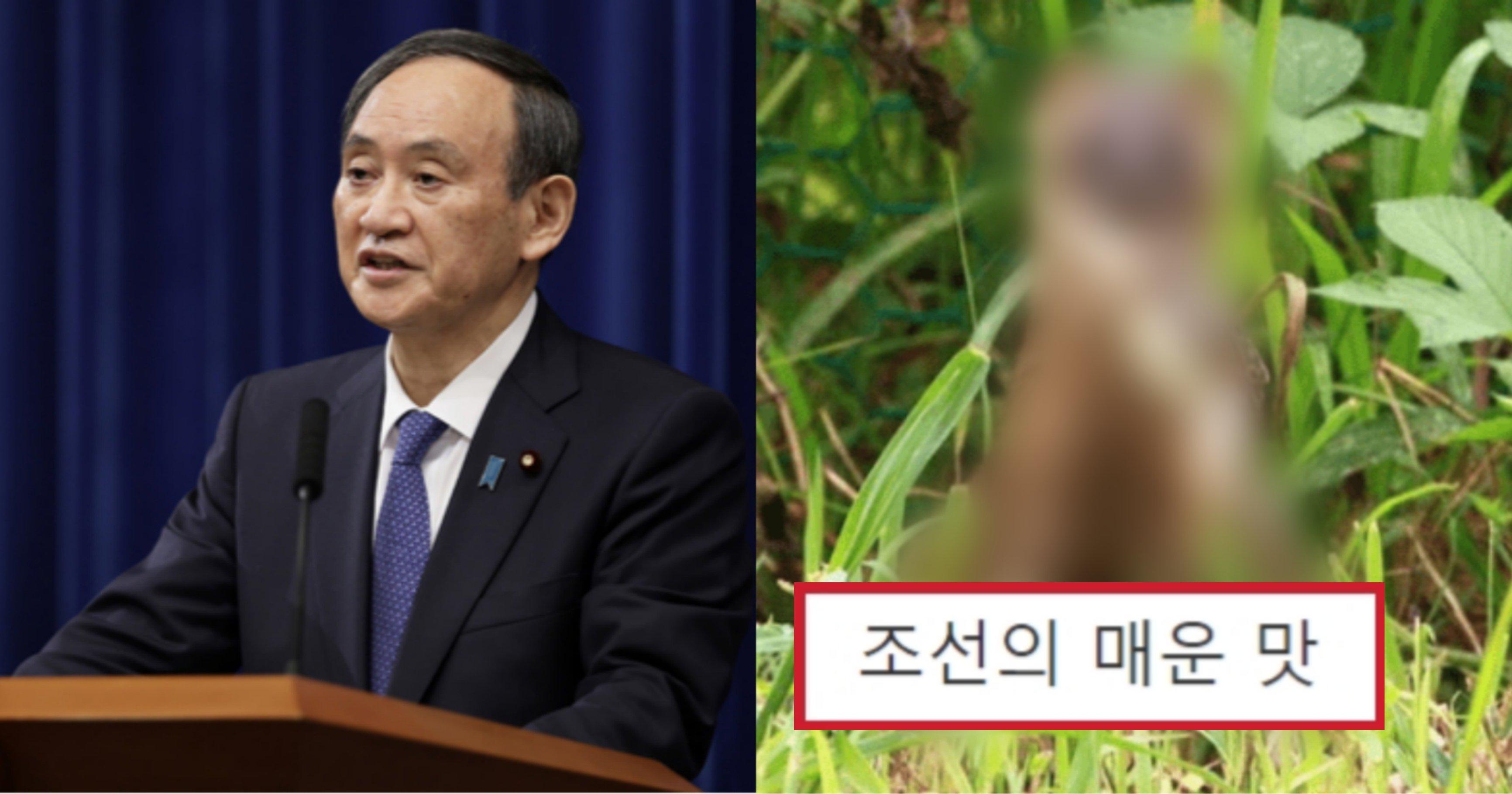 kakaotalk 20210916 181713751.jpg?resize=412,275 - 최근 일본 땅으로 넘어가 생태계를 박살내서 인기 장난 아니라는 한국 토종 동물