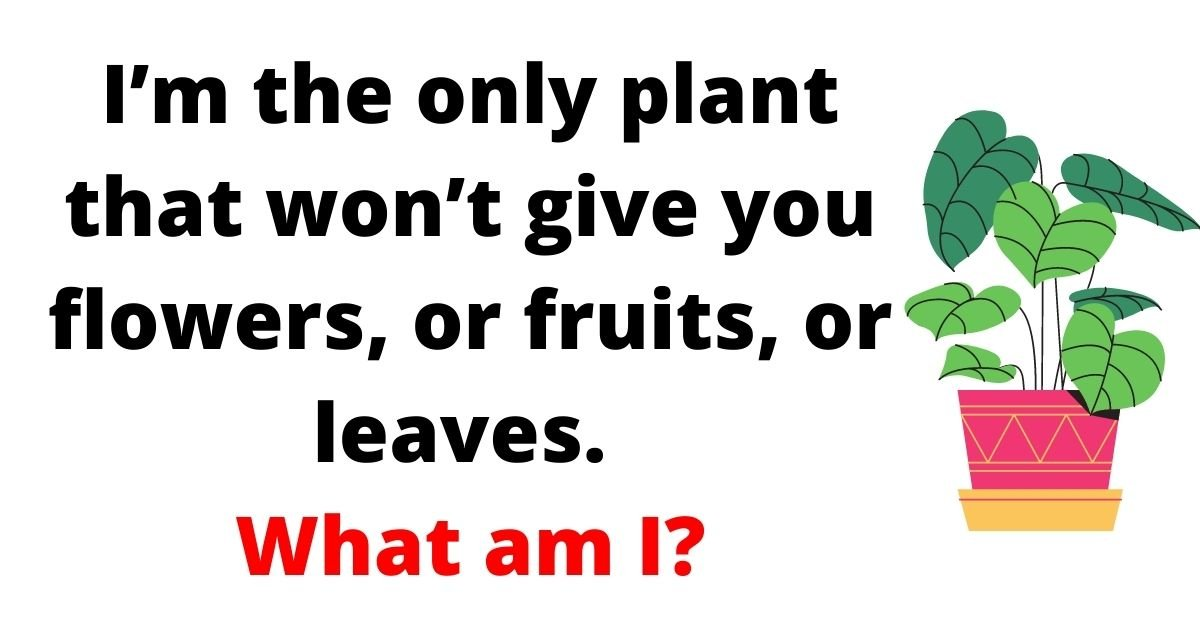 plant3.jpg?resize=1200,630 - Brain Test: 85% Of People FAIL To Solve This Test! But Can You Figure Out The Answer To This Simple Question?