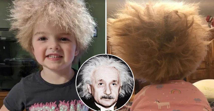 screenshot 2021 09 18 003057.png?resize=412,232 - Albert Einstein Of This Century! 6-Year-Old Lookalike Of Albert Einstein Found In Newcastle