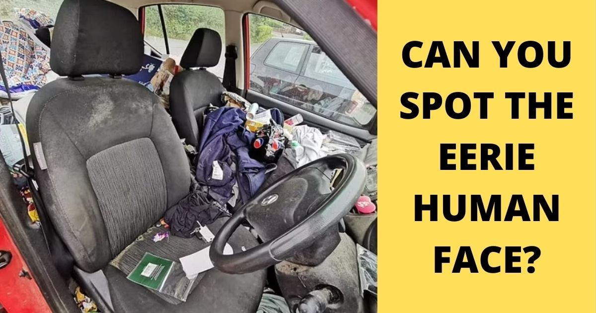 smalljoys 23.jpg?resize=1200,630 - Eerie 'Human Face' Is Spotted In A Filthy Car Photo BUT Can You See It?