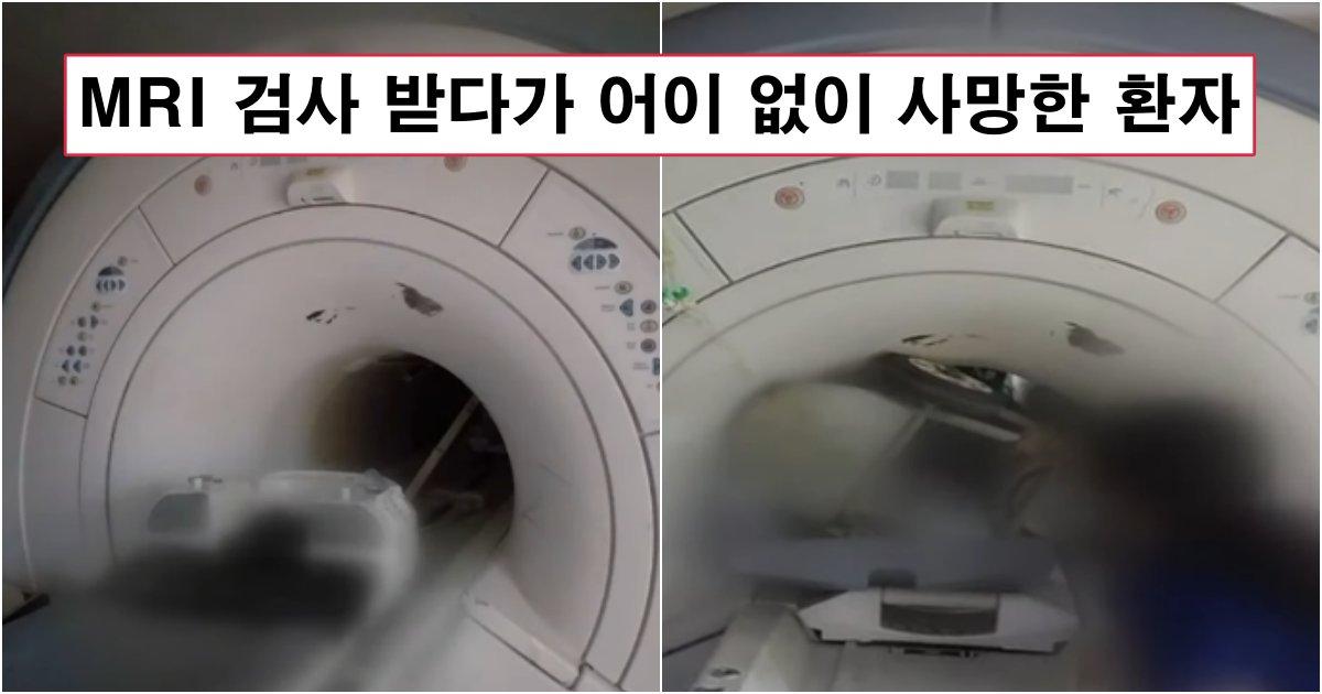 collage 173.png?resize=412,232 - 바로 어제 일어난 올해 한국에서 가장 어이없는 사고로 병원에서 사망한 환자