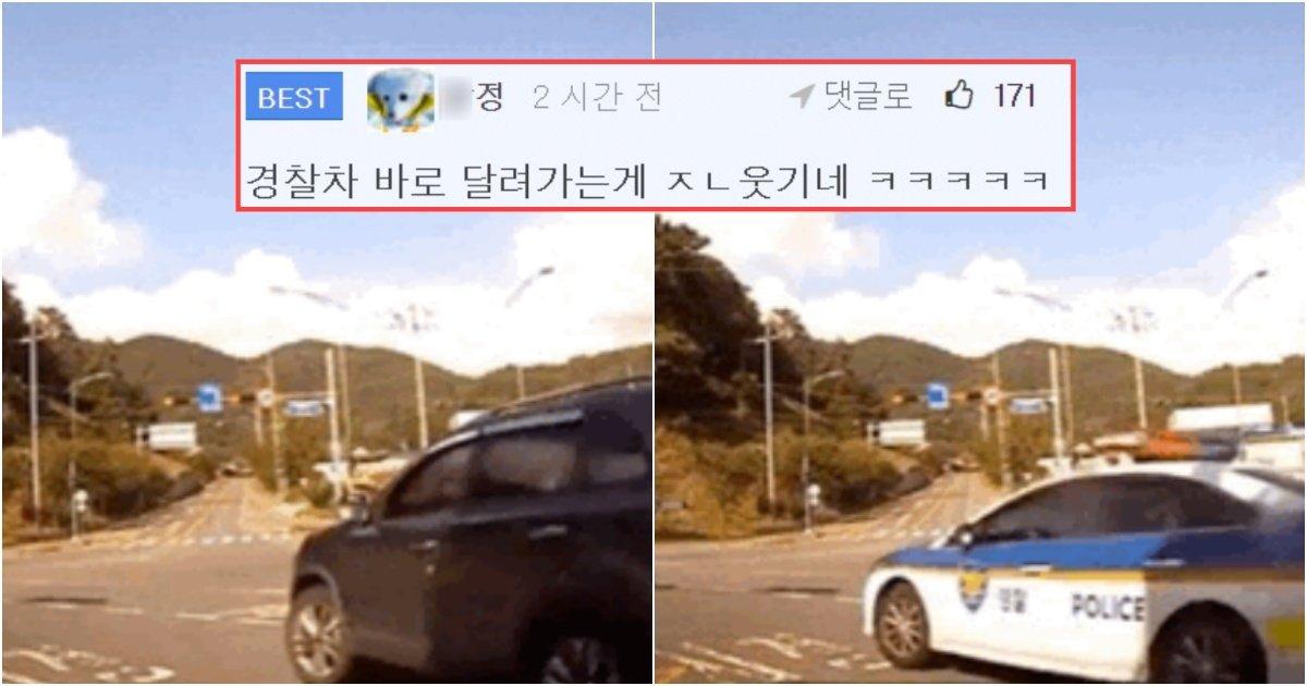 "collage 209.jpg?resize=1200,630 - ""경찰 : 실적 개꿀 ㅋㅋㅋㅋㅋ 퇴근한다 ㅋㅋㅋ"" (+움짤)"
