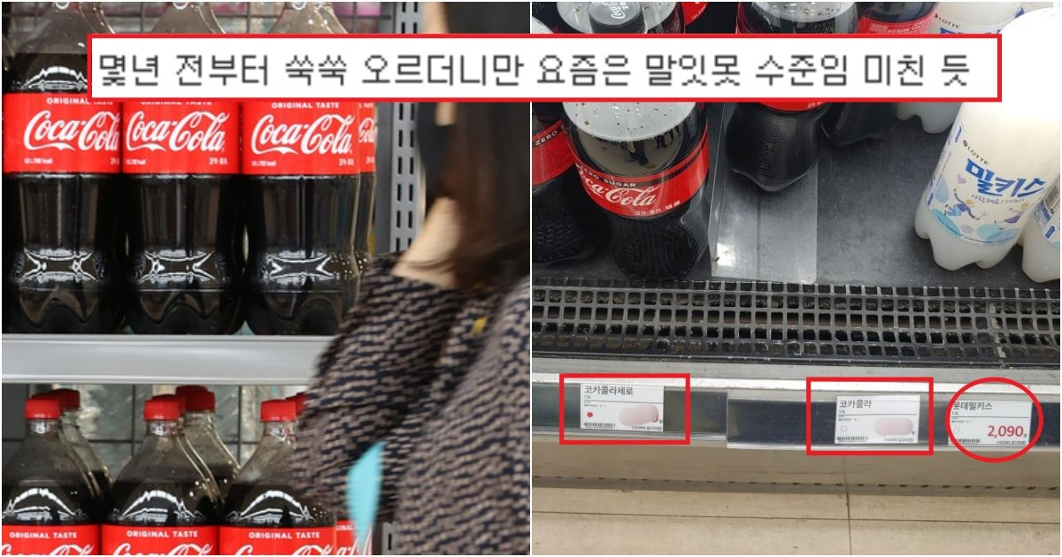 collage 255.jpg?resize=1200,630 - 현시각 코카콜라 가격이 '일본보다 2배가 비싸'..미쳐버린 한국의 코카콜라 가격