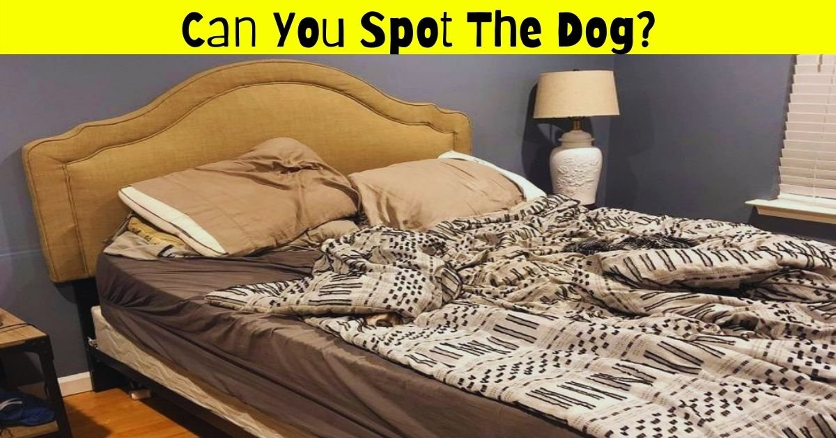 dog4 1.jpg?resize=412,232 - Can You Spot The Dog Hiding In This Picture? 9 Out Of 10 People Fail To Find The Adorable Pooch!