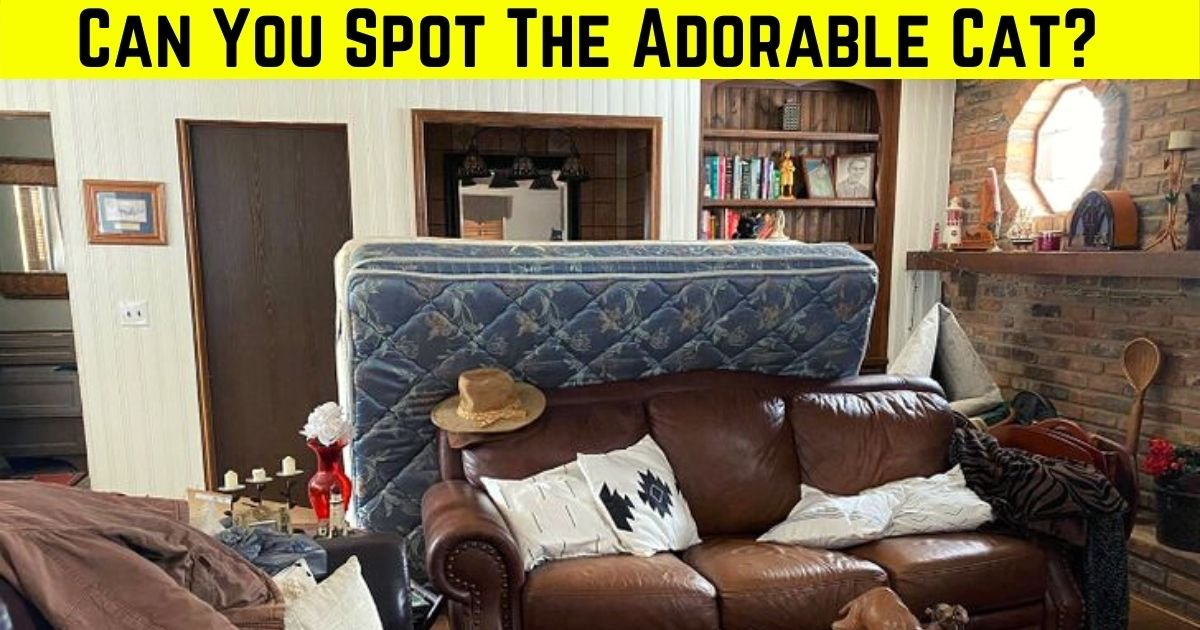 feline4.jpg?resize=412,275 - 9 Out Of 10 Viewers Fail To Find The CAT Hiding In This Photo Of A Living Room! But Can You Spot It?