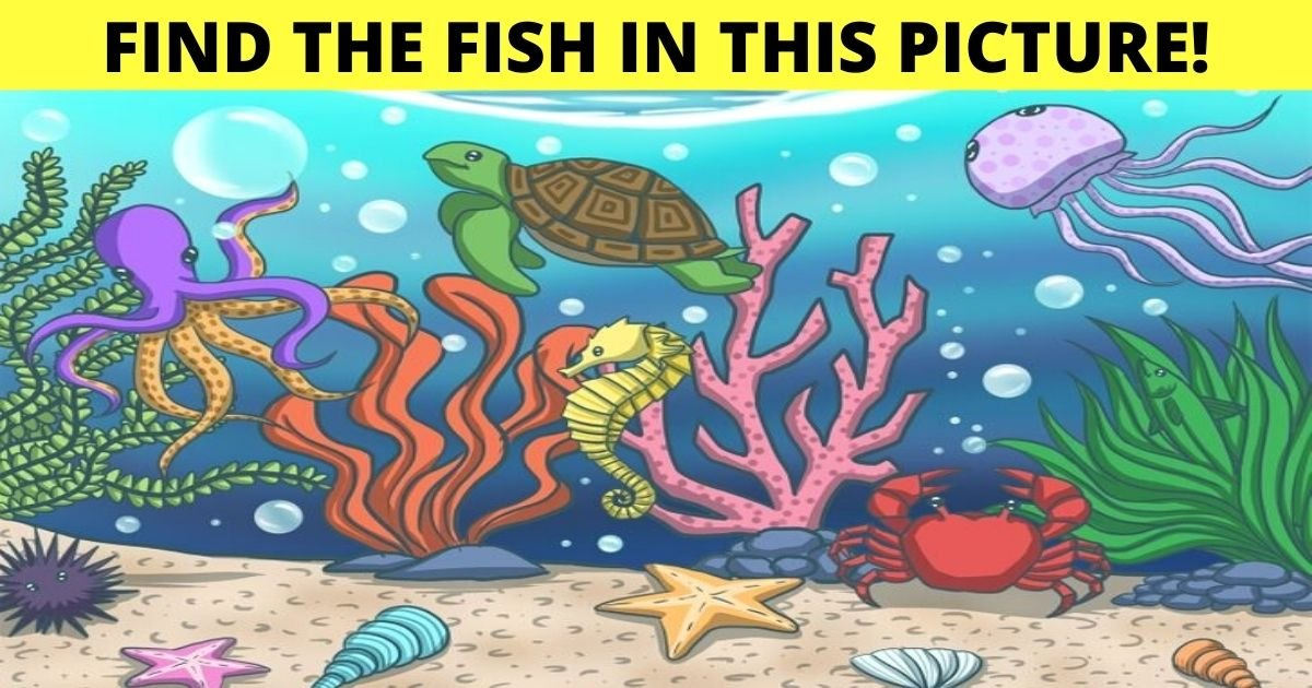 find the fish in this picture.jpg?resize=412,232 - 90% Of Viewers Can't Spot The FISH In This Image! But Can You Find It?