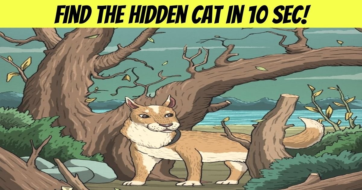 find the hidden cat in 10 sec.jpg?resize=412,232 - 90% Of People Can't See The Cat In This Image - But Can You Spot It?