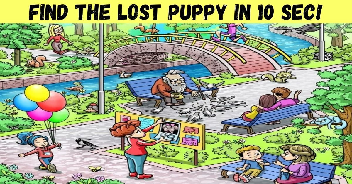 find the lost puppy in 10 sec.jpg?resize=412,232 - How Fast Can You Spot The Lost Puppy? Help The Woman Find Her Beloved Pooch!