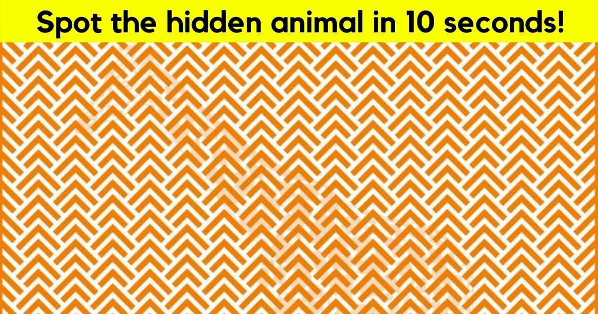 giraffe4.jpg?resize=412,232 - 9 Out Of 10 Viewers Can't Spot The Hidden Animal In This Picture! But Can You See It?