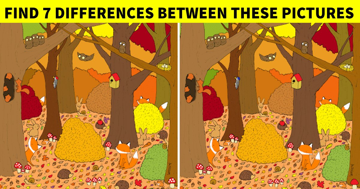 q6.jpg?resize=1200,630 - How Quickly Can You Spot The Differences In This Tricky Visual Challenge?