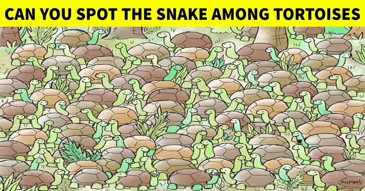 q8 6.jpg?resize=412,232 - How Fast Can You Spot The Slithering Snake Among The Tortoises?