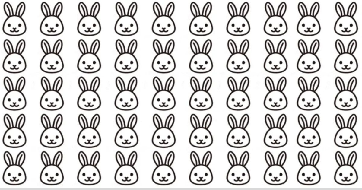smalljoys 20.jpg?resize=412,275 - There's A Frowning Bunny Among The Happy Ones, But Can You Spot It In Twenty Seconds?