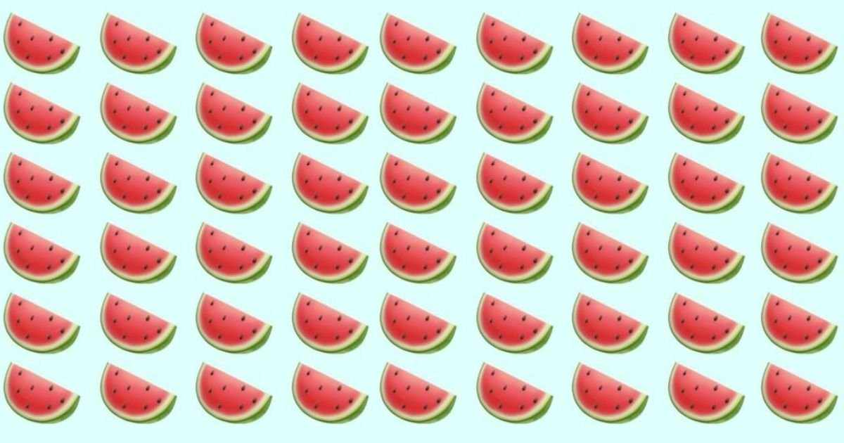 smalljoys 30.jpg?resize=412,232 - Tricky Visual Puzzle: Where Is The Seedless Watermelon?